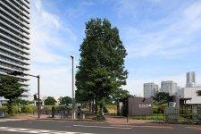 97628_07-01yokohama-portside