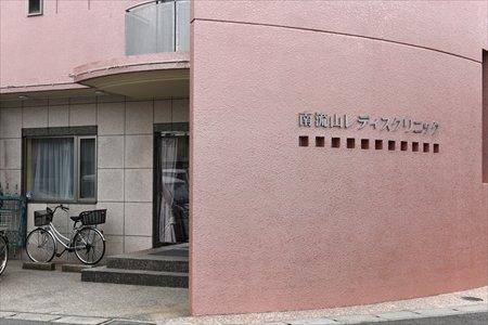 169466_09-03minaminagareyama