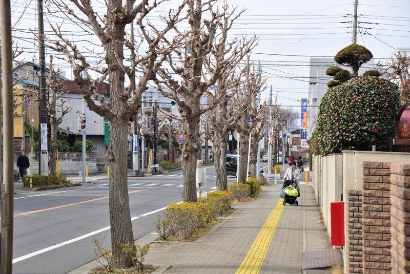 「江戸川台」駅付近の街並み
