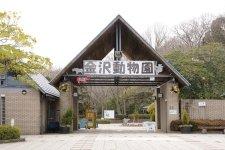 72213_37-01kanazawahakkei