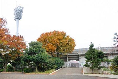 154085_27-01yokohamamitsuzawakouen