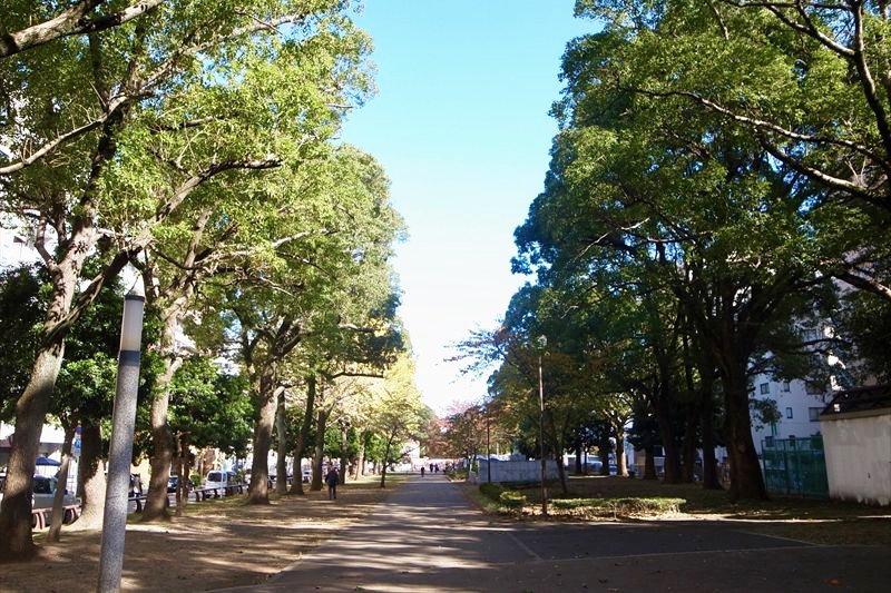全長1.2km続く「大通り公園」
